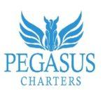 catamaran-hire-sydney-pegasus-charters.jpg